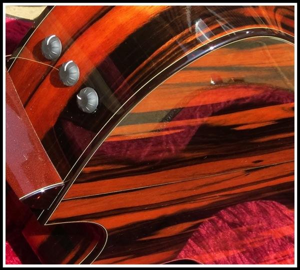 Macasser Ebony Taylor Guitar 2