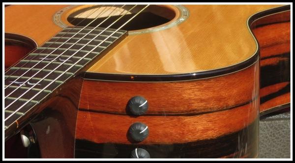 Macasser Ebony Taylor Guitar 3