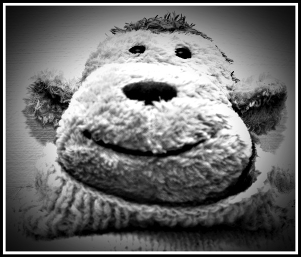 Portrait of the knitted toy Monkey from the TV Adverts