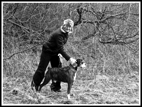 A framed black and white photo of Sarah leaning over Bruce the obexer dog who is ready for sarah to take off his lead