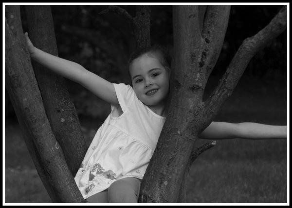 Ella Tree 2