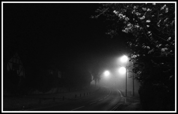 The Fog looking spooky as it creeps across a road with a tree on the righthand side
