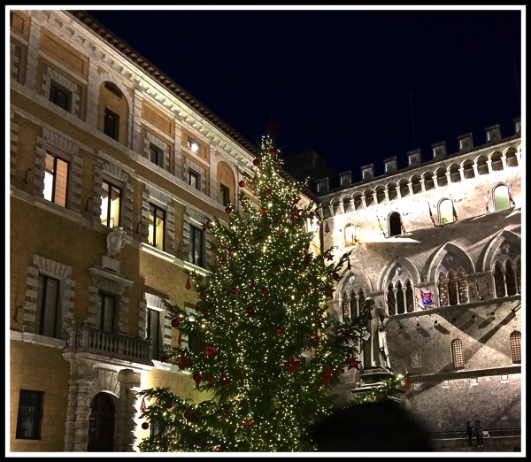 Siena Christmas Tree at night