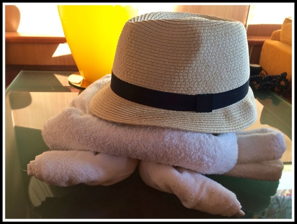 Folded turtle from towels with my hat as the shell