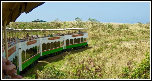 St Kitts Train