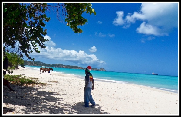 Photo of the horse instructor walking across the beautiful beach