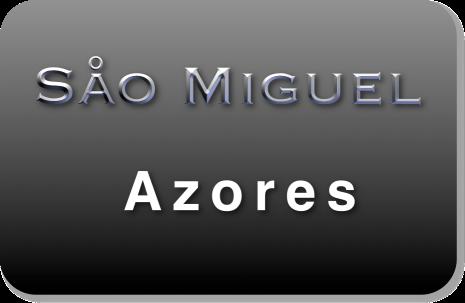 Såo Miguel logo