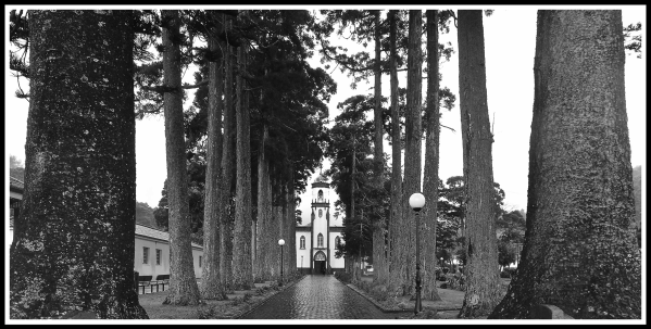 Sao Miguel church through the trees
