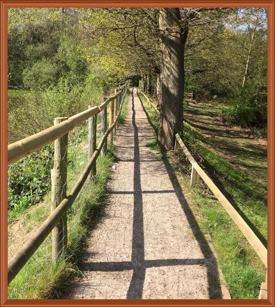 Big pond fence path