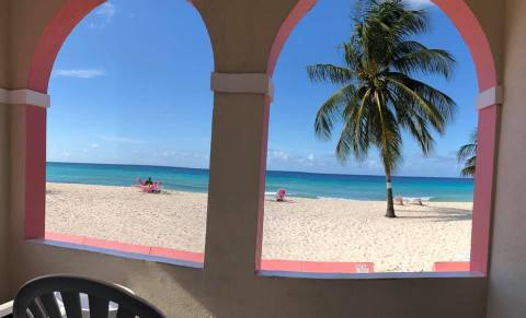 View of a barbados beah with palm tree from a terrace looking through arches