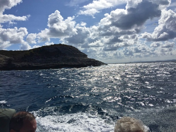 Back on the waves with a island sticking out of the water.jpg