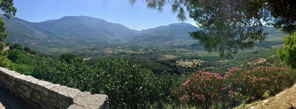 Breathtaking panorama of the rolling hills and olive trees