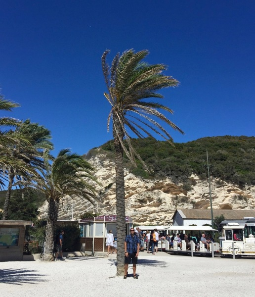 Me stood under a huge palm tree