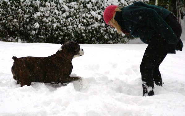 Sarah bending over and telling Bruce who is eagerly waiting whilst having a paw in the air stood in the snow with a side angle perspective