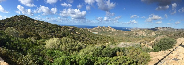 Sarah panorama of the whole field and hills of Corsica