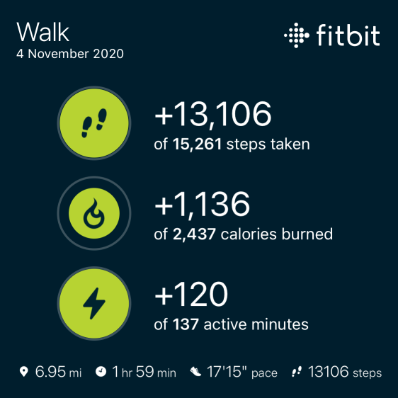 Fitbit 05 11 2020