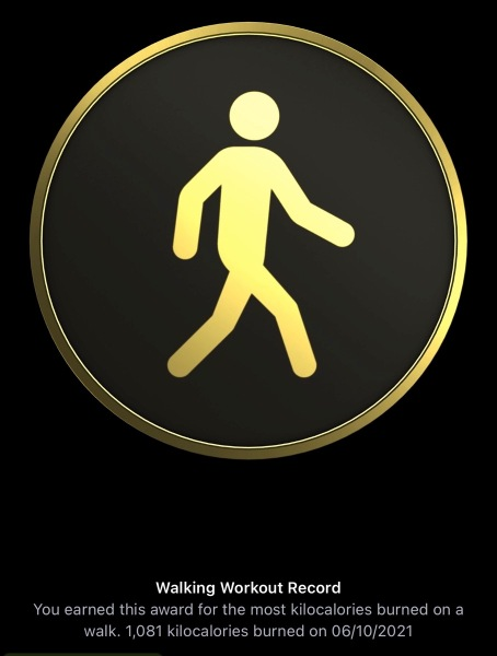 Walking workout record 6th Oct 2021
